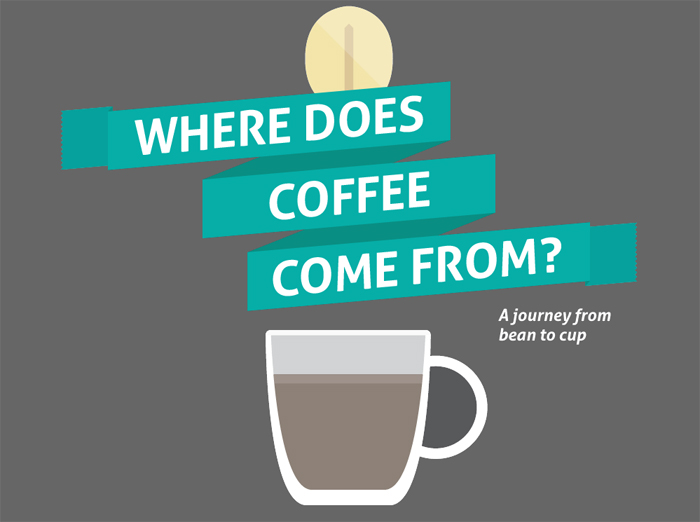 Where does coffee comes from infographic